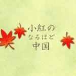 naruhodo_toplogo
