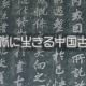 第31回 日本語の中の中国語その14――目に一丁なし(1)